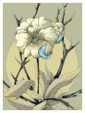Pansy Flower /  Tenderness - Małgorzata Wysocka