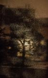 Gwiezdny pył - Małgorzata Marczuk