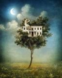 My house is my fortress - Ra Niedzielska