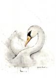 Swan - Agnieszka Nawrat