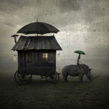 Journey - Leszek Bujnowski