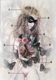 Wenus Anatomy - Marta Julia Piórko