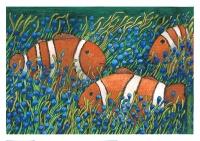 Clownfish - Justyna Brzozowska
