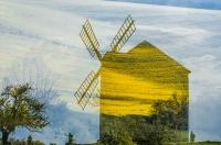 Windmill - Małgorzata Marczuk