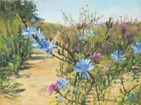 Chicory - a traveler in Przybyszów from the series Through flowers  - Aleksandra Rey