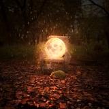 Night visions - Tomasz Zaczeniuk