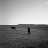 Road - Joanna Borowiec