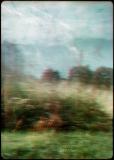 004 Afterimages - Wojciech Walkiewicz