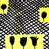 Tulipany - Joanna Mrozowska