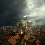 Guardians of Dubrovnik - Tomasz Zaczeniuk