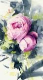 Róża - Karina Jaźwińska