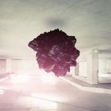 Amazed - Eugene Soloviev