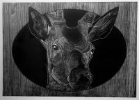 Obverse - deer - Petrela Kuźmicka