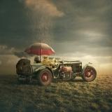 The trip - Tomasz Zaczeniuk