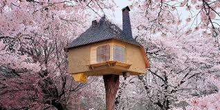 Grüner Wohnen. Ökologische Architektur heute