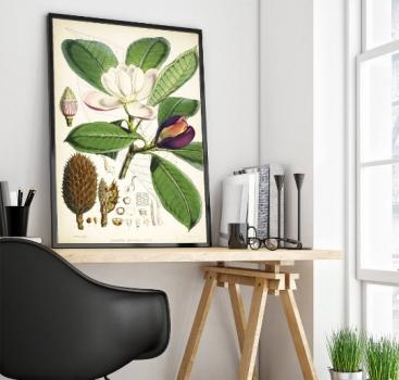 Niezwykły urok dawnych ilustracji botanicznych